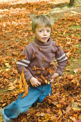 https://cf.ltkcdn.net/kids/images/slide/91986-565x850-happy-leaf-kids.jpg