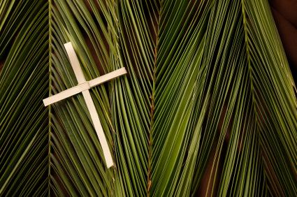 Palm leaves and cross