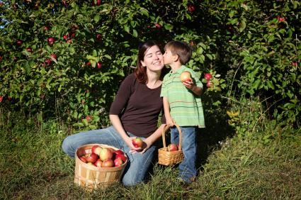 Boy kissing mom's cheek while apple picking
