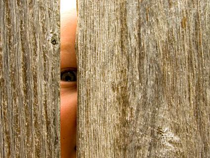 Child peeking through fence