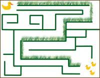 duck maze