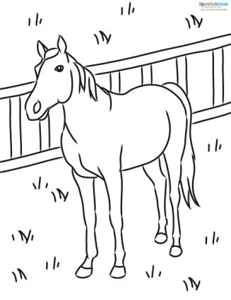 horse in pasture coloring page - Horse Pictures Coloring Pages
