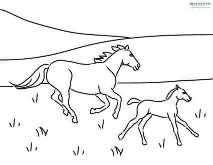 mother and foal running free coloring page