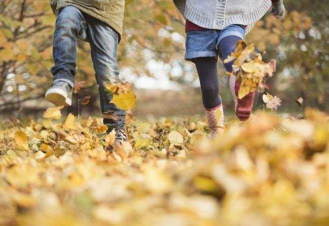 Image of children walking in autumn leaves