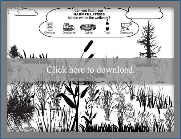 Printable Wetland Search and Find Worksheet