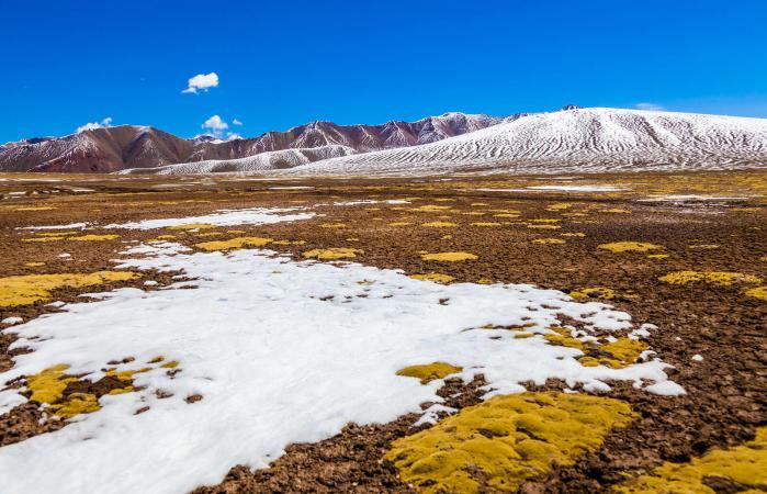 View of Tundra on Qinghai-Tibet Plateau