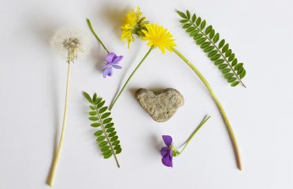 Natural Items