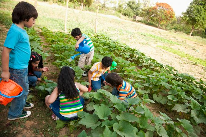 kids gardening on a farm