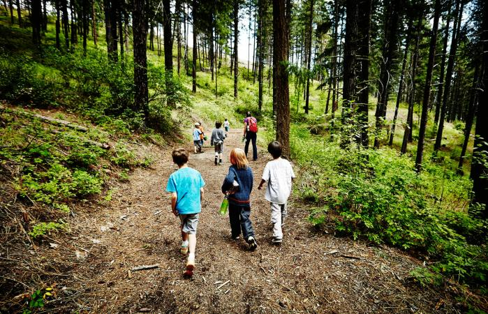 Kids walking on trail in forest