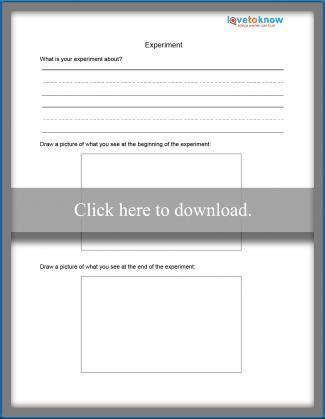 Simple Experiment Observation Worksheet