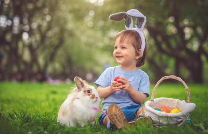 Boy playing with bunny and Easter eggs