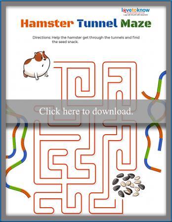 Hamster Tube Maze