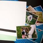 Dog Memory Book