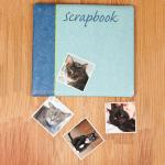 Cat Lover's Scrapbook