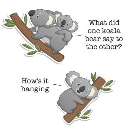 Koala Bear Jokes