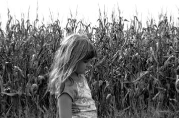 young girl in corn field