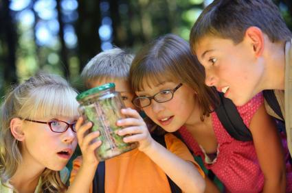 Cheap Summer Camp Ideas