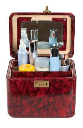 Cosmetics vanity case