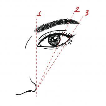 Eyebrow Illustration