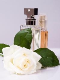 Perfume_leaf_rose.jpg
