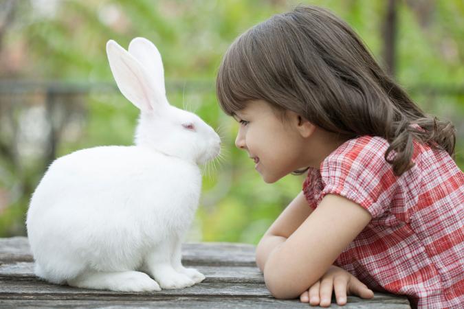 Chica con mascota conejo blanco