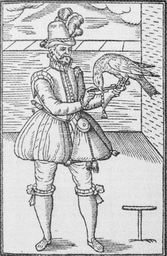 Falconer George Turberville