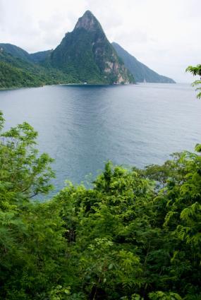 West Indies landscape