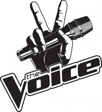 Facts About The Voice TV Show