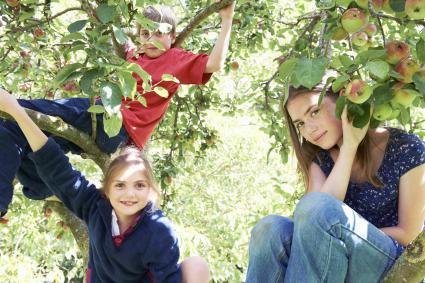 Manzano y niños