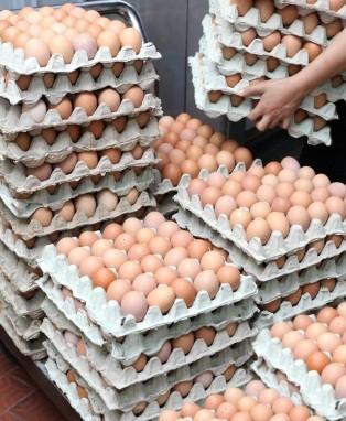 Wholesale Organic Foods