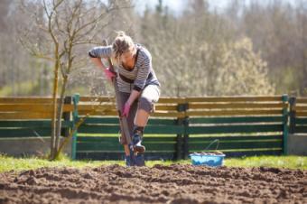 Lower Soil PH Organically