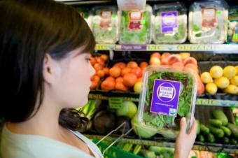 Top Organic Food Brands