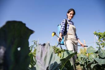 Woman working on farm