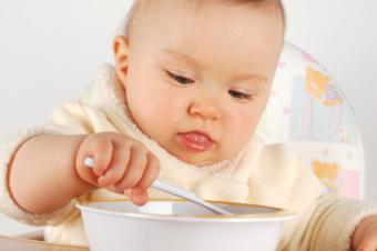 Organic Baby Food Recipes
