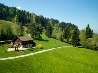 Organic Farming and Sustainable Forestry