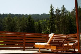 Organic Furniture in Canada