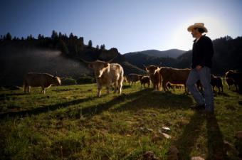 Organic_farmer.jpg