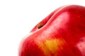 Where to Buy Organic Apple Cider Vinegar