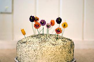 Organic Flour Cake