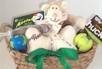 Organic Pet Boutique Toy Basket