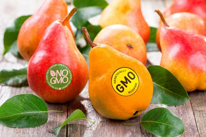 organic pears and a gmo pear