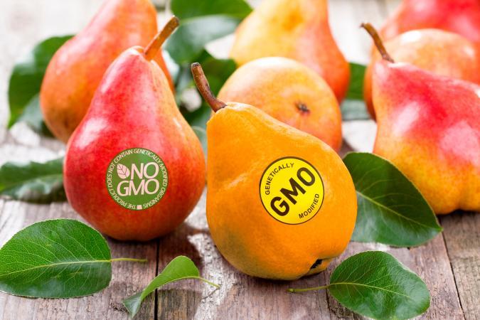 GMO and non-GMO