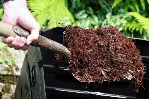 Shovel Full of Compost
