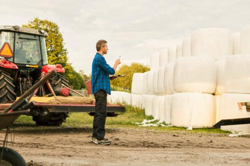Man analyzing covered hay bales