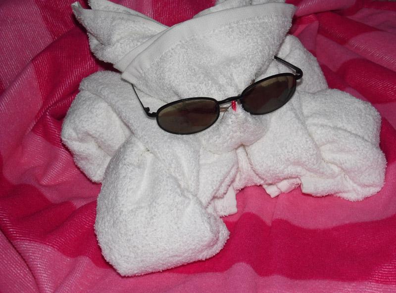 towel-bunny-08.jpg