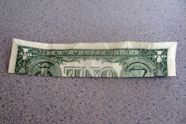 Origami Money Frog Lovetoknow