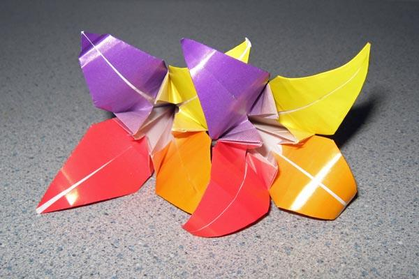 How To Make An Easy Origami Lily Lovetoknow