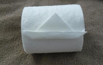 How to Make an Origami Toilet Paper Sailboat