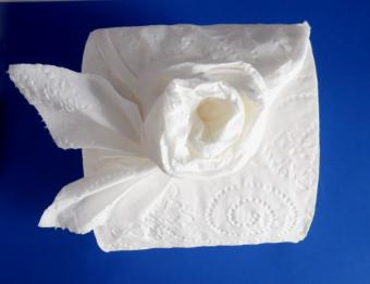 toilet paper origami rose