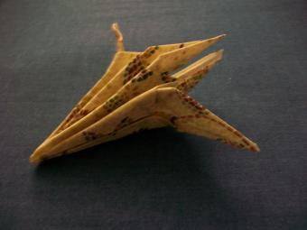 https://cf.ltkcdn.net/origami/images/slide/62954-800x600-100_1466.JPG